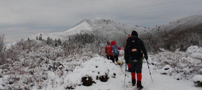 【例会山行】納山祭登山 初冬の比良.武奈ヶ岳(2019.12.07)