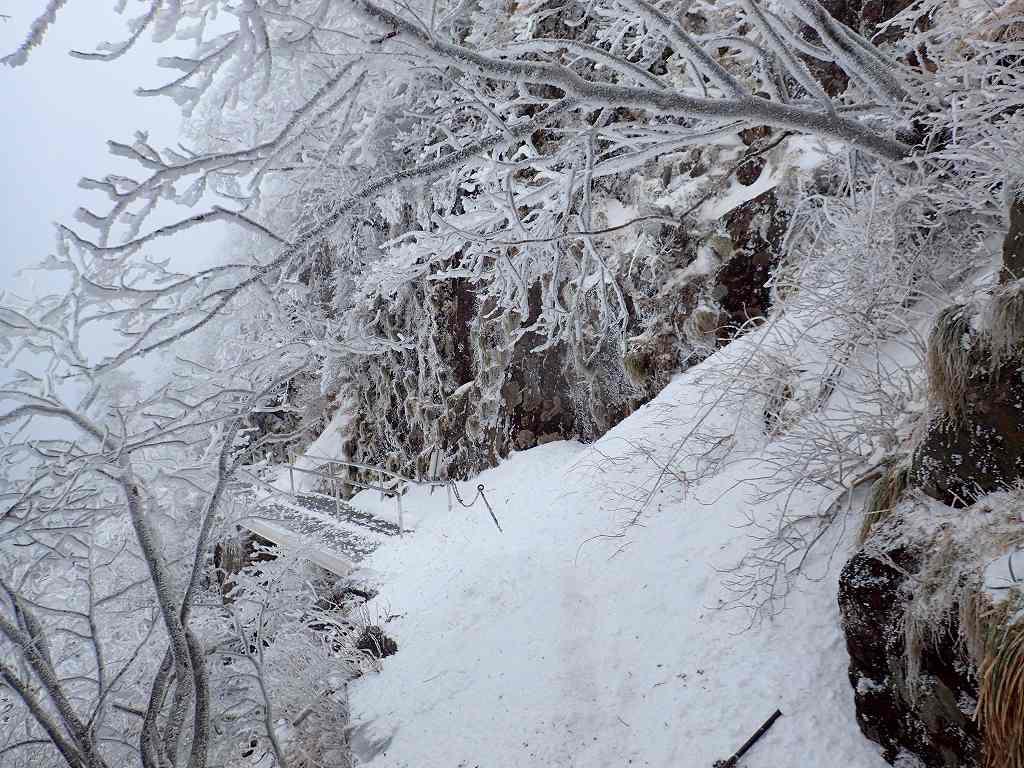雪が多いと階段が埋まって恐怖の斜面となる所も今年はしっかり階段が出ている