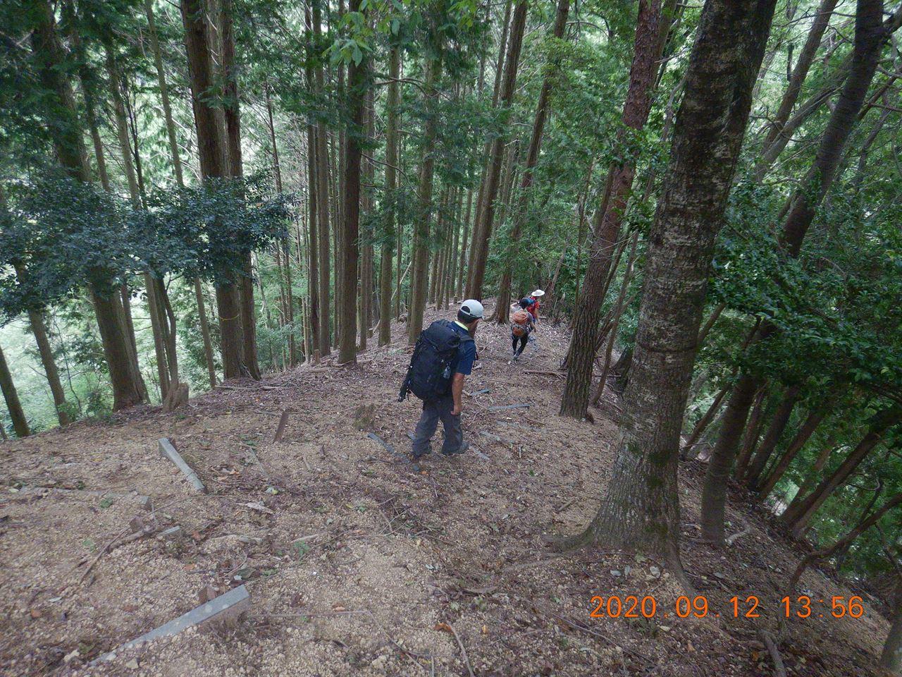 【個人山行】箕面.鉢伏山と明ヶ田尾山と激下り(2020.9.12)