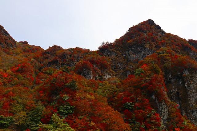 【個人山行】寒風山~笹ヶ峰(2020.10.18)